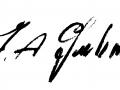 Gulino Signatura