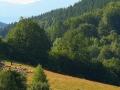 GL Landschaft