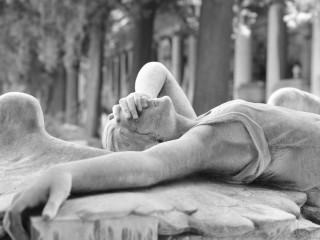 """Termine """"Vom Mythos der erlösenden Gewalt"""""""