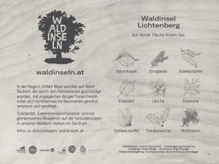 """""""Waldinseln"""""""